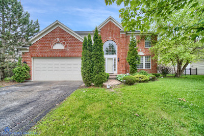 Algonquin Single Family Home For Sale: 4161 Bunker Hill Drive