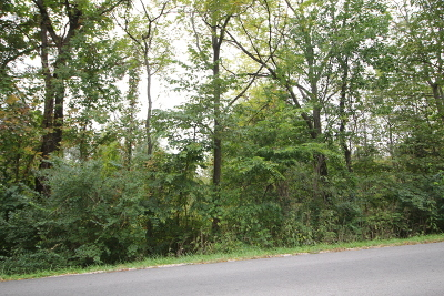 New Lenox Residential Lots & Land For Sale: 985 North Vine Street