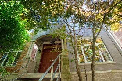 Single Family Home For Sale: 1545 West Altgeld Street