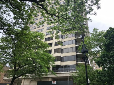 Condo/Townhouse For Sale: 1501 North State Parkway #16C