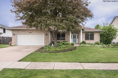 Joliet Single Family Home New: 1081 Chovan Drive