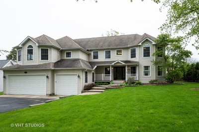 Palatine Single Family Home For Sale: 481 West Daniels Road