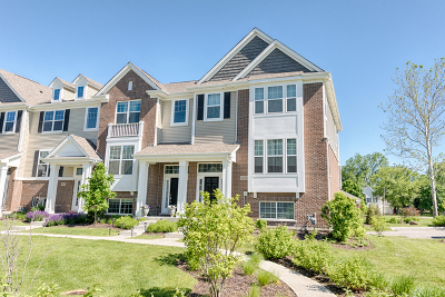 Naperville Condo/Townhouse For Sale: 1431 North Charles Avenue