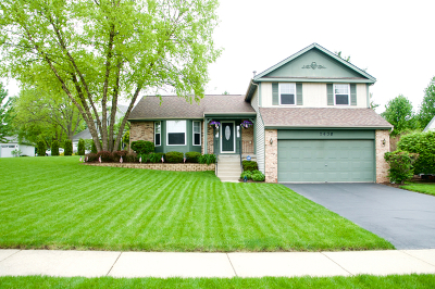 West Dundee Single Family Home For Sale: 2430 Glenmoor Drive