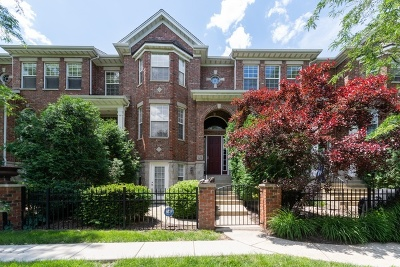 Naperville Condo/Townhouse For Sale: 924 Shandrew Drive