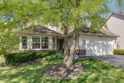 Plainfield Single Family Home Re-Activated: 13458 Redberry Circle