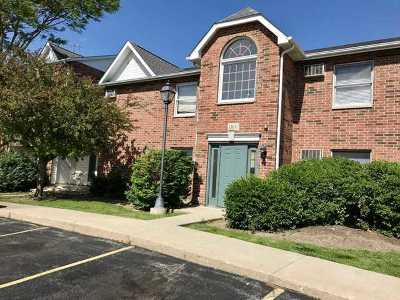 Lake In The Hills Condo/Townhouse New: 1360 Cunat Court #1C