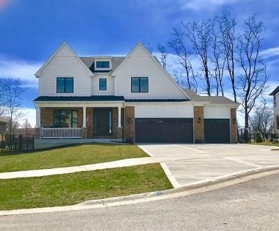 Orland Park Single Family Home For Sale: 10051 El Cameno Re'al Drive