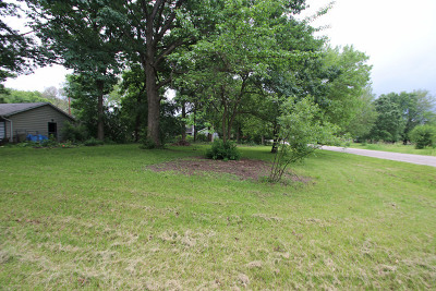 Mc Henry County Residential Lots & Land For Sale: Blk 20 Elm Street