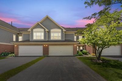 Buffalo Grove Condo/Townhouse For Sale: 295 Manor Drive