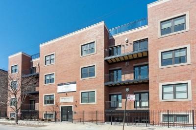 Portage Park Rental For Rent: 4812 West Montrose Avenue #301