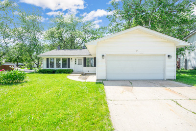 Bolingbrook Single Family Home For Sale: 149 Flagstaff Drive