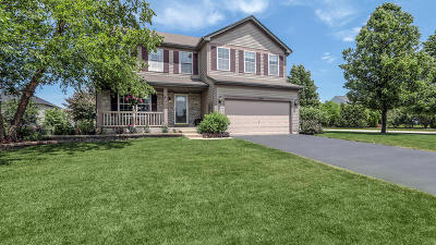 Kane County Single Family Home For Sale: 1090 Griffith Avenue