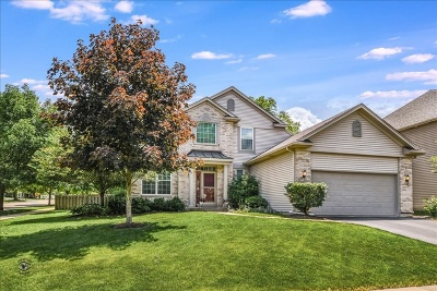 Aurora Single Family Home For Sale: 2231 Kealsy Lane