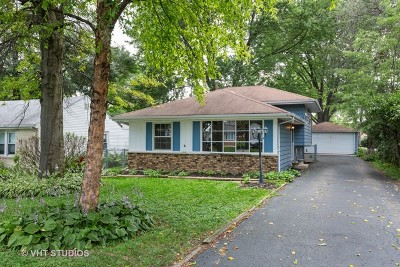 Westmont Single Family Home For Sale: 3906 North Lincoln Street