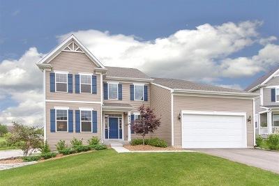 South Elgin Single Family Home New: 812 Asbury Boulevard