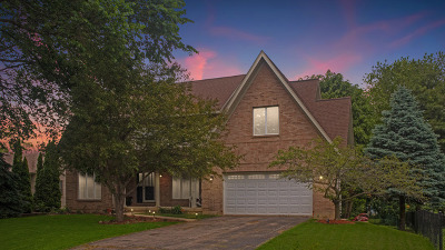 McHenry Single Family Home New: 1202 Carey Drive