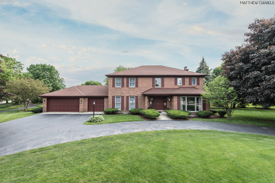 Burr Ridge Single Family Home For Sale: 1472 Tomlin Drive
