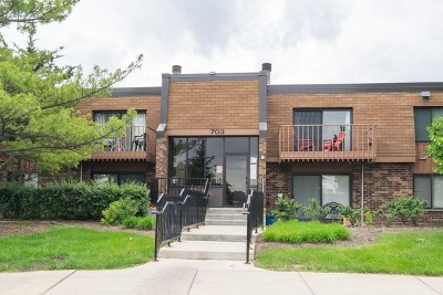 Schaumburg Condo/Townhouse For Sale: 703 Waterford Road South #1B