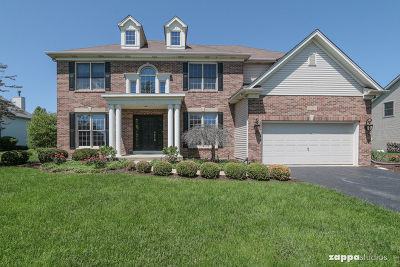Yorkville Single Family Home New: 2971 Old Glory Drive