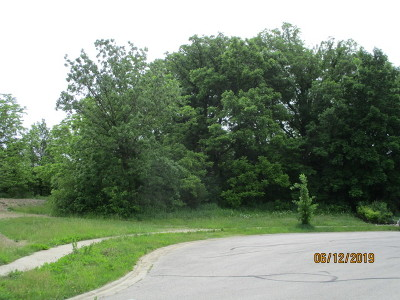 Mokena Residential Lots & Land For Sale: 21035 South Mayfair Court
