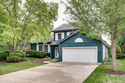 Schaumburg Single Family Home For Sale: 525 Tebay Place