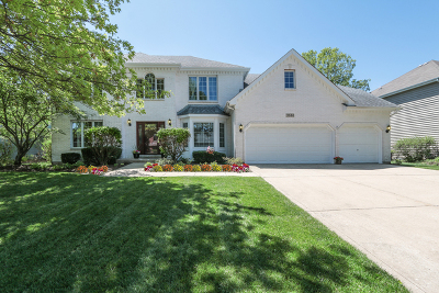Naperville Single Family Home Re-Activated: 3844 Mandeville Lane