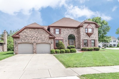 Palatine Single Family Home For Sale: 2506 Arlingdale Court