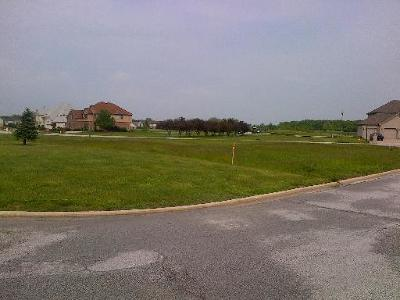 Tinley Park Residential Lots & Land For Sale: 4 Athena Court