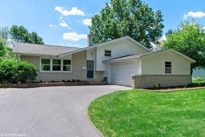 Naperville Single Family Home New: 214 Tupelo Avenue