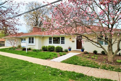 Glen Ellyn Single Family Home For Sale: 950 Roslyn Road