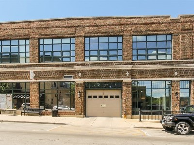 West Dundee Condo/Townhouse New: 110 North 2nd Street #2