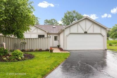 Streamwood Condo/Townhouse For Sale: 290 Juniper Circle