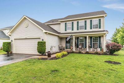 Minooka Single Family Home For Sale: 1304 Clifton Drive