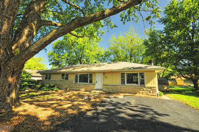 New Lenox Single Family Home For Sale: 127 Branchaw Boulevard