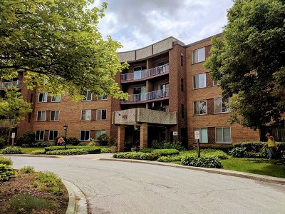 Palatine Condo/Townhouse New: 909 East Kenilworth Avenue #225