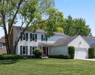 Buffalo Grove Single Family Home For Sale: 1315 Gail Drive