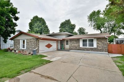 West Dundee Single Family Home For Sale: 629 Eichler Drive