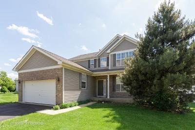 Elgin Single Family Home New: 1159 Clover Hill Lane