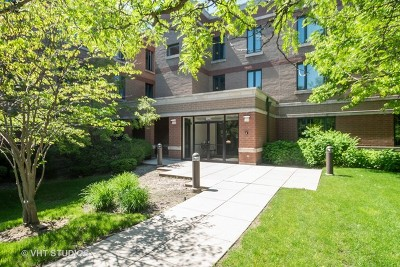 Highland Park Condo/Townhouse For Sale: 891 Central Avenue #101