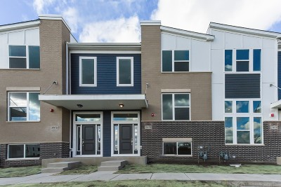 Condo/Townhouse For Sale: 29w708 Everton Lot #1.03 Drive