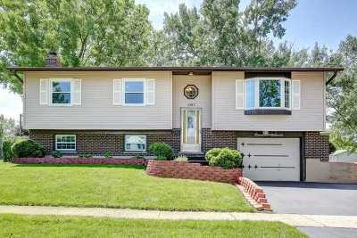 Hanover Park Single Family Home Contingent: 1167 Countryside Drive