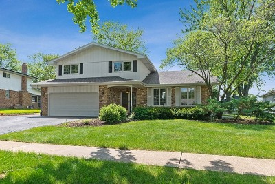 Homer Glen Single Family Home For Sale: 14514 Mallard Drive