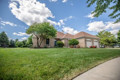 Shorewood Single Family Home For Sale: 1229 Wales Court