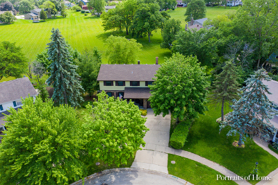 Naperville Single Family Home For Sale: 23w411 Woodcrest Court West