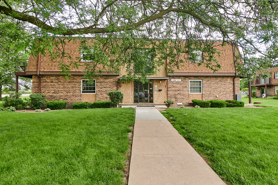 Westmont Condo/Townhouse Contingent: 18w155 63rd Street #103-B