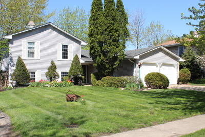 Bolingbrook Single Family Home For Sale: 157 Mayfield Drive