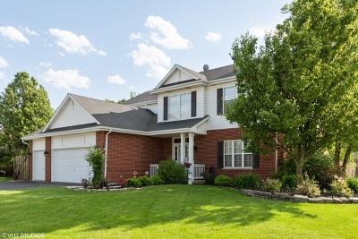 New Lenox Single Family Home For Sale: 2321 Kingfisher Lane