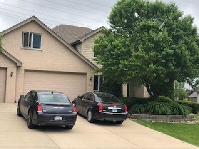 Homer Glen Single Family Home New: 13521 Lost Boy Lane