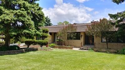 Bensenville Single Family Home For Sale: 1271 Edgewood Avenue
